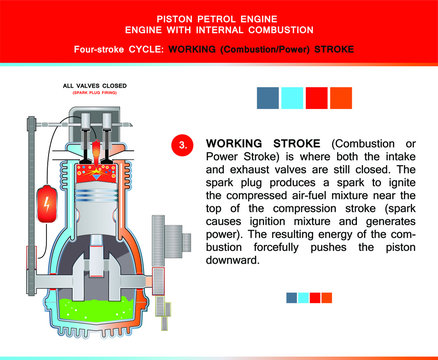 Piston engine four stroke cycle in structural cross section for education