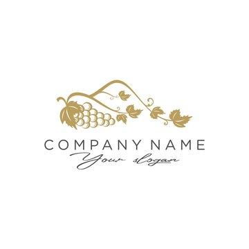 logo grapes and mountains icon vector