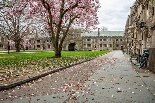 Princeton, NJ / USA - 4/3/2020: Empty campus of Princeton University during Coronavirus quarantine