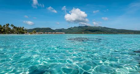 Aluminium Prints Blue Lagoon landscape in Moorea, French Polynesia, South Pacific.