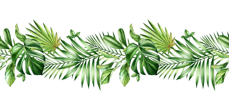Watercolor tropical seamless border. Repetetive pattern. Horizontal decoration with jungle greenery. Exotic palm leaves, monstera, isolated on white. Botanical hand drawn illustration