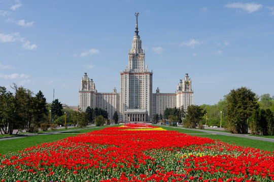 Main building of Moscow State University with carpet of tulips. Moscow, Russia.