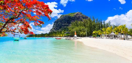 Wall Mural - Best tropical destination - paradise island Mauritius and best beach Le Morne