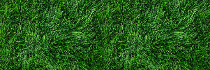 Keuken foto achterwand Gras Natural green grass background, fresh lawn top view