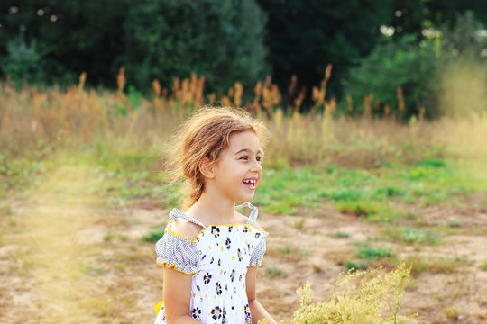 Portrait of smiling beautiful little girl at  the meadow at summer day.