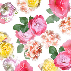 Fototapete - Beautiful floral background of roses and pelargoniums. Isolated