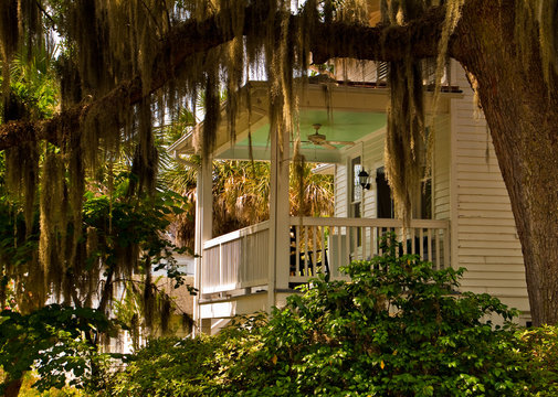 Live Oak Tree Draped With Spanish Moss and Historic Home Near Waterfront Park, Beaufort, South Carolina, USA