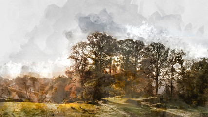 Digital watercolor painting of Beautiful vibrant Autumn Fall landscape of woodland in early morning light over English countryside