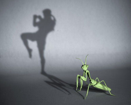 Concept of hidden potential. A paper mantis figure casting a shadow of a Thai boxer. 3D illustration