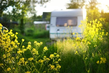 Caravan trailer parked in a green summer garden near the country houses on a sunny day. Yellow wildflowers close-up. Idyllic rural landscape. Finland