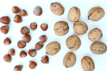 Superfoods - Superfoods - Nuts - Walnuts and hazelnuts on white background