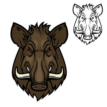 Boar hog wild animal muzzle, vector hunter club icon. Hunting sport and outdoor safari adventure, angry wild pig swine with tusk symbol