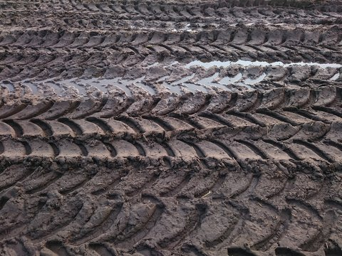 Detail Shot Of Tire Marks