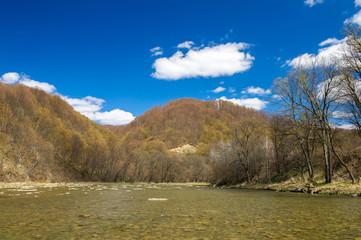 Bieszczady przyroda krajobraz