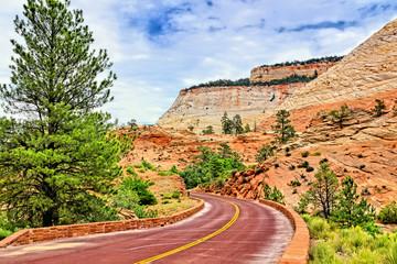 Fototapete - Beautiful drive through Zion National Park, Utah, USA