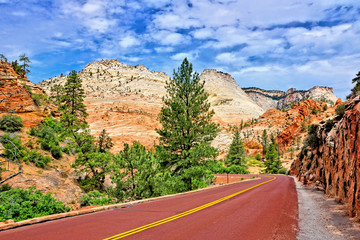 Wall Mural - Scenic drive through Zion National Park along Highway 9, Utah, USA