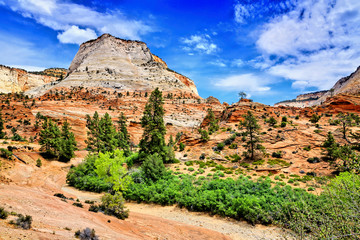 Fototapete - Amazing red peaks of Zion National Park, Utah, USA