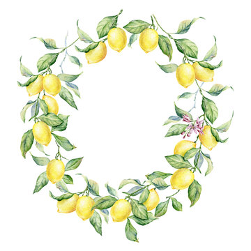Hand drawn round frame of watercolor lemon. Watercolor illustration wreath of lemon and leaves.