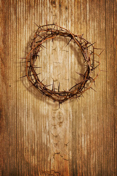 Crown Of Thorns Against Wood