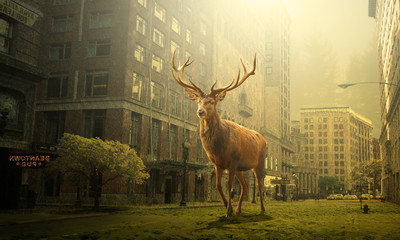 Poster Hert view of deer in a dead city, Dreaming concept