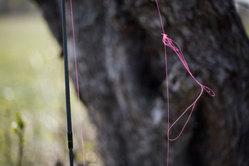 Tangled fishing cord on spinning. Tree on background.