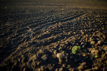 The ploughed field. Sowing preparation fertile land.