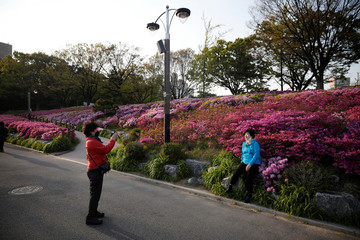 A woman wearing a mask to avoid the spread of the coronavirus disease (COVID-19) takes a photograph of her friend in front of flowers as they work out at a park in Seoul