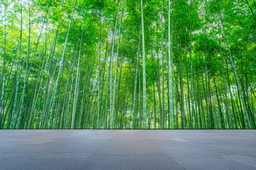 Background of green bamboo forest in the park