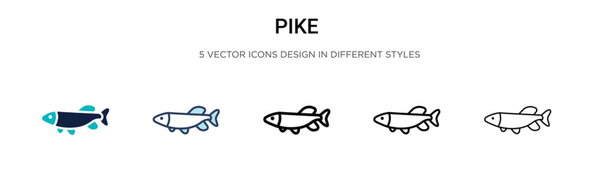 Pike icon in filled, thin line, outline and stroke style. Vector illustration of two colored and black pike vector icons designs can be used for mobile, ui, web