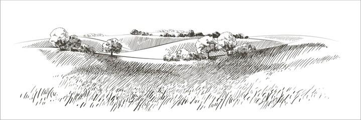 Photo sur Plexiglas Blanc Vector sketch Green grass field on small hills. Meadow, alkali, lye, grassland, pommel, lea, pasturage, farm. Rural scenery landscape panorama of countryside pastures. illustration