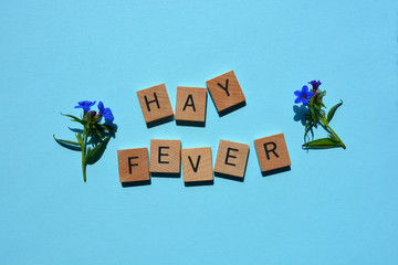 Hay Fever, words in wooden alphabet letters