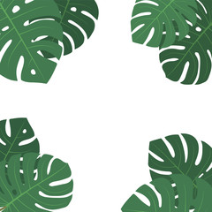 Wall Mural - Vector flat decorative square frame with green monstera leaves on white background