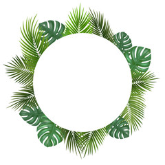 Wall Mural - Vector decorative round frame with realistic monstera and palm leaves on white background