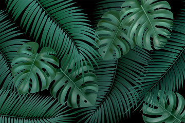 Wall Mural - Vector decorative background with realistic monstera and palm leaves on black background