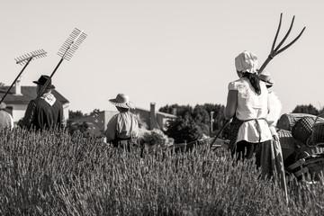 travail des champs à l'ancienne