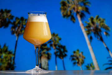 A hazy India pale ale craft beer in a Teku Glass with tropical palm trees and blue sky.