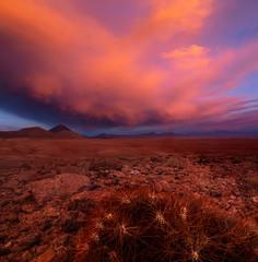 Fototapeten Kastanienbraun wunderschöner Sonnenuntergang in der Atacama Wüste, Chile.
