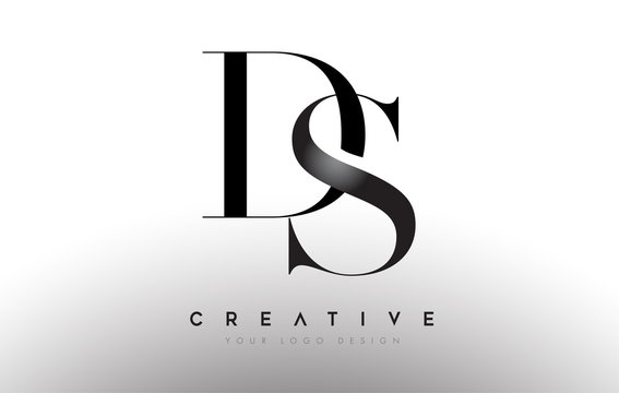 DS sd letter design logo logotype icon concept with serif font and classic elegant style look vector