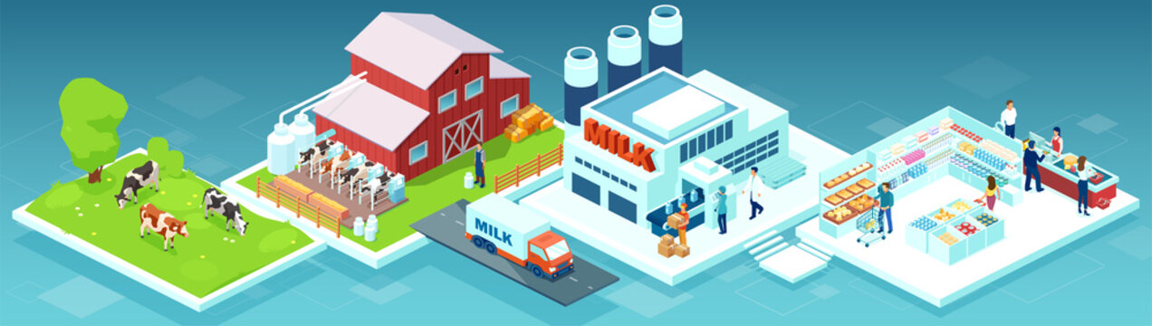 vector of a milk produce production chain from a dairy farm through factory to consumer on a supermarket shelves
