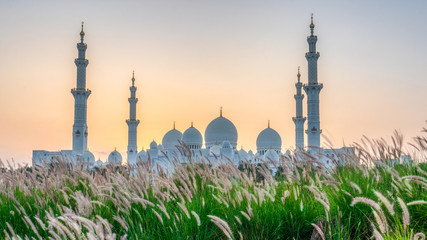Sheikh Zayed Grand Mosque and Reflection in Fountain at Sunset - Abu Dhabi, United Arab Emirates (UAE)  Papier Peint