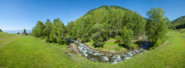 Wall Mural - Panoramic summer view, clean river. Fresh greens of forests and meadows.