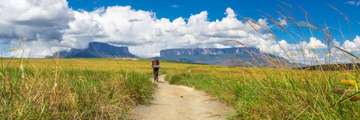 Foto auf AluDibond Honig Man alone during trekking at Monte Roraima.