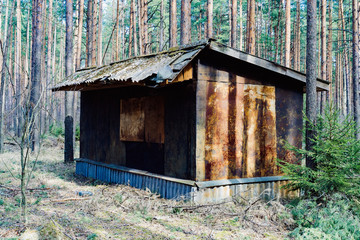 Small and scary abandoned cabin in the middle of the forest. A concept of loneliness.