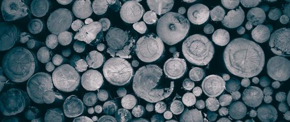 Keuken foto achterwand Brandhout textuur round teak wood stump background