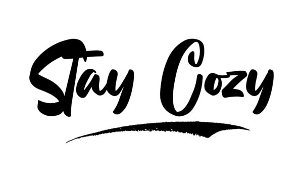 Stay Cozy Calligraphy Handwritten Lettering for Posters, Cards design, T-Shirts.  Saying, Quote on White Background