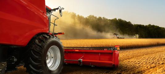 Fototapete - Combine harvester on the wheat field