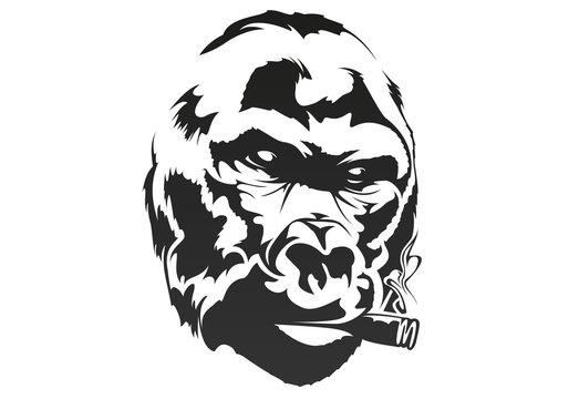 Smoking gorilla in one color. Vector illustration.