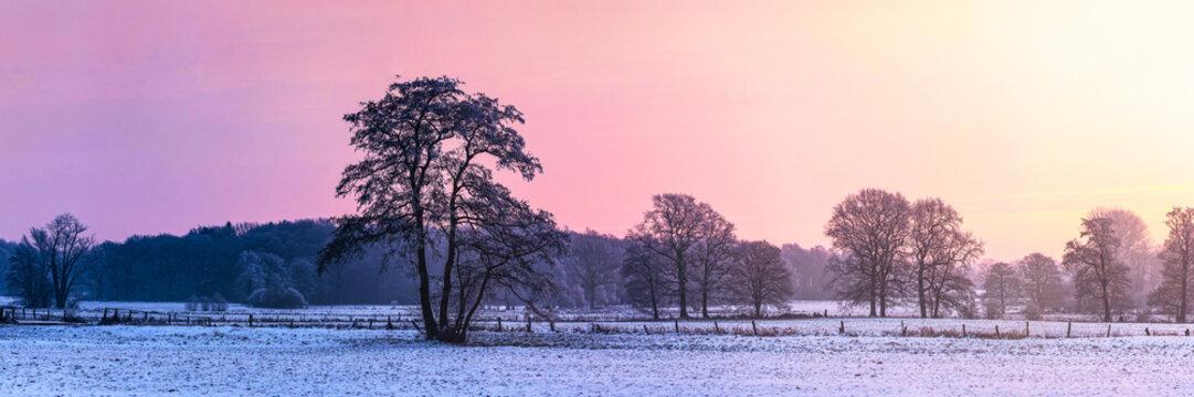 Wintermorgen Norddeutschland