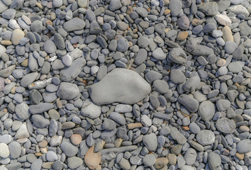 Large flat grey stone in the middle of large beach pebbles