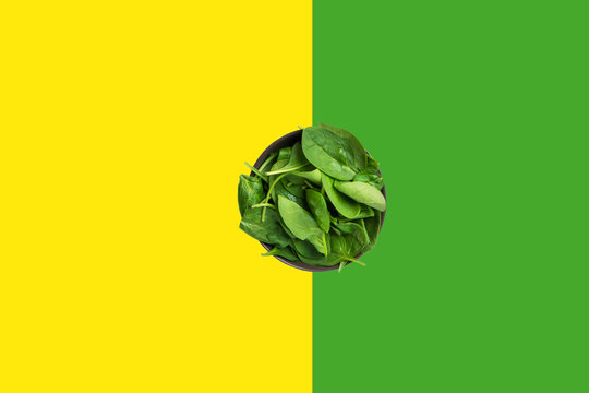 Fresh raw spinach leaves in bowl on duotone yellow green background. Healthy plant based diet detox smoothies ingredient. Minimalist creative food poster